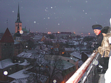 The roofs of old Tallinn the night - magical